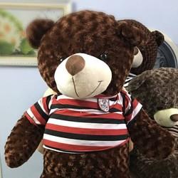 Gấu bông teddy lông xoắn hoa hồng khổ 1m2