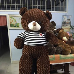 Gấu bông teddy lông xoắn hoa hồng khổ 1m8