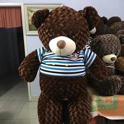 Gấu bông teddy lông xoắn hoa hồng khổ 1m4