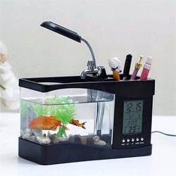 Bể cá phong thủy mini