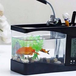 Bể cá mini sử dụng nguồn USB