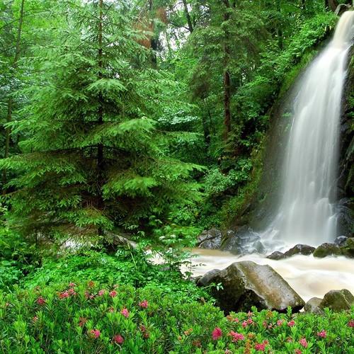 Tranh dán tường VTC Cảnh đẹp thiên nhiên WT0001 - 4217215 , 5339163 , 15_5339163 , 329000 , Tranh-dan-tuong-VTC-Canh-dep-thien-nhien-WT0001-15_5339163 , sendo.vn , Tranh dán tường VTC Cảnh đẹp thiên nhiên WT0001