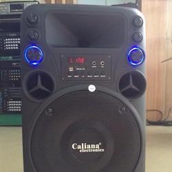 Loa kéo caliana Electronics T012 - 3 tấc