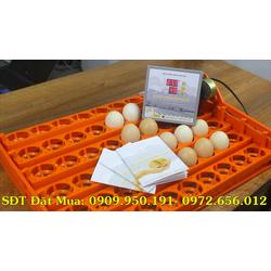 Máy Ấp Trứng Tự Động Loại 54 Trứng - Không Sử Dụng Bóng Đèn Sợi Đốt