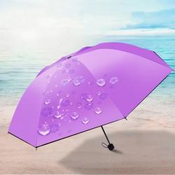 Dù xếp đi mưa nở hoa 5 lá Màu tím cung cấp bởi WinWinShop88