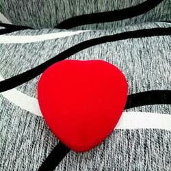 10 Hộp nhung tim đựng đồng hồ vong tay