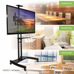 Giá treo tivi di động AVA1500 nhập khẩu chất lượng cao
