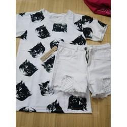 set quần short lưới trắng và áo mèo