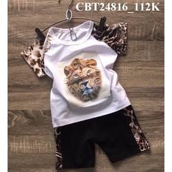 Bộ bé trai in hình beo 3D cá tính cho bé từ 1-8 Tuổi_CBT24816