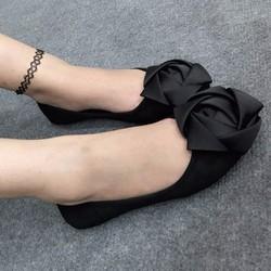 giày búp bê 1