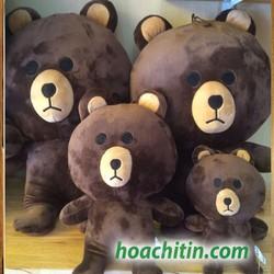 Thú nhồi bông Gấu Brown 70cm