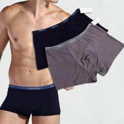 combo 5 quần sịp đùi nhật chất cotton sịn