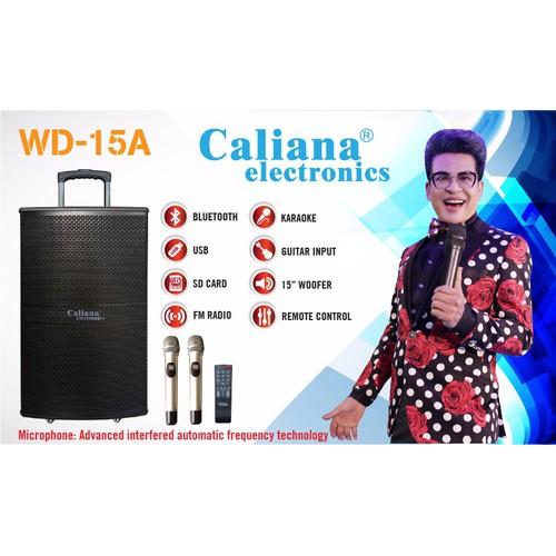 Loa kéo Caliana WD-15A - 5353468 , 8925145 , 15_8925145 , 7350000 , Loa-keo-Caliana-WD-15A-15_8925145 , sendo.vn , Loa kéo Caliana WD-15A