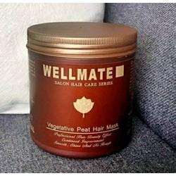Ủ tóc Wellmate _  Ý