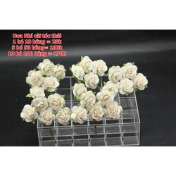Hoa xốp nhi màu trắng ,đẹp nhẹ nhàng , mẫu thái
