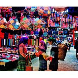 Tour Hà Nội  Sapa  Hạ Long 3N2Đ