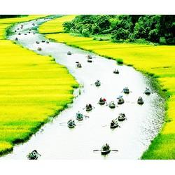 Tour Hoa Lư  Tam Cốc 1N cùng Vietbamboo Travel