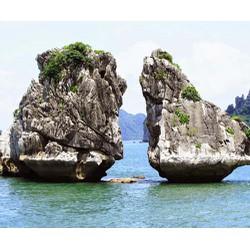 Tour Hà Nội  Hạ Long  Tuần Châu 2N1Đ