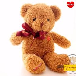 Gấu Teddy cao 40cm