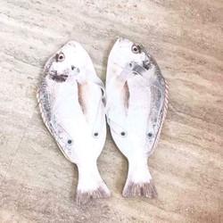 HÀNG NHẬP - Dép kẹp hình cá khô