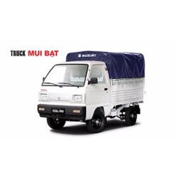 xe suzuki carry truck 650kg