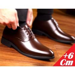 Giày tăng chiều cao nam- Sang trọng