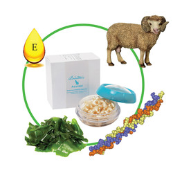 Tinh chất trị nám từ nhau thai cừu