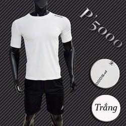 Bộ quần áo thể thao nam SP503