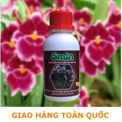 Phân bón lá sinh học amino acid Smin cho hoa lan ra hoa chai 100ml