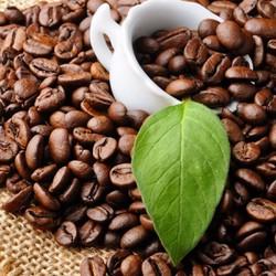 Cà phê nguyên chất - đặc biệt - 500g