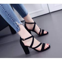 giày dây gót vuông korea