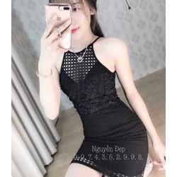 Váy ôm, ren - hàng Quảng Châu