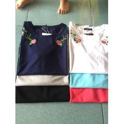 áo thun thêu cotton hàng xuất khẩu lên form bao chuẩn đẹp luôn nè