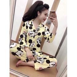 Sét Bộ Pijama Hàng Nhập QC Xinh Xắn