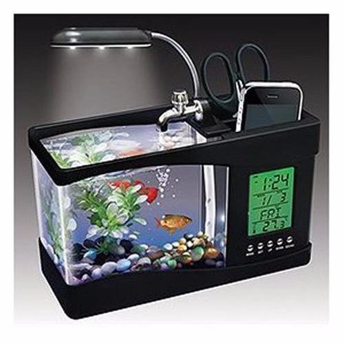 Bể cá phong thủy mimi