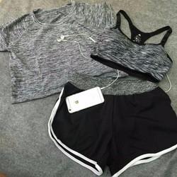 Sét 2 áo + quần tập gym, yoga cho nữ_BN595