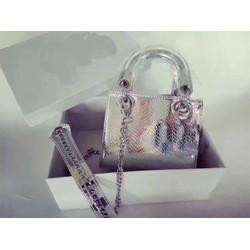 Túi xách màu bạc mini F1