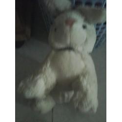 Thỏ trắng rất đẹp