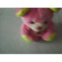 Gấu bông hồng