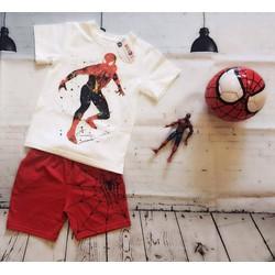 Bộ sưu tập Siêu anh hùng tranh vẽ - Spiderman