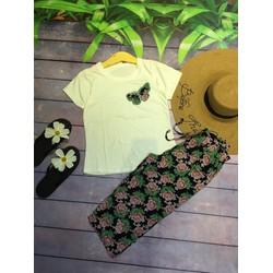 set áo bướm quần hoa-hàng qc