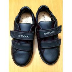 Giày GEOX hàng VNXK