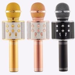 Micro Karaoke WS-858