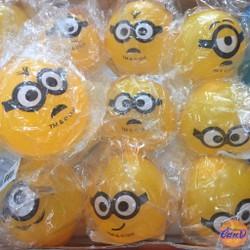 Waterball hình Minions