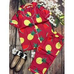 Set bộ phi trái cây quần lửng hàng thiết kế! MS: S270609 GS: 115k