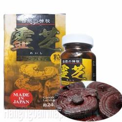 Nấm linh chi đen Nhật Bản- 240 viên