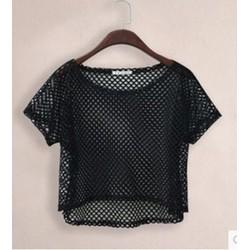 áo crop top lưới đục lỗ Mã: AK1952 - ĐEN