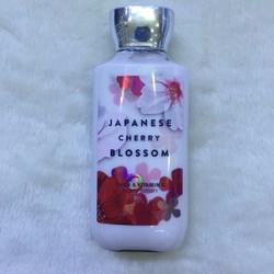 Sữa Dưỡng Thể Bath - Body Works Japanese Cherry Blossom