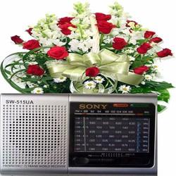 ĐÀI RADIO USB  KIÊM MÁY NGHE NHẠC MP3 SW-515U