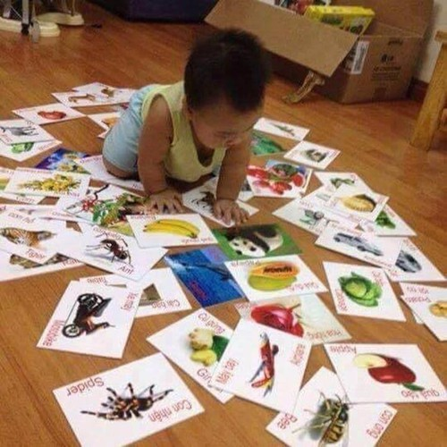 Bộ thẻ học song ngữ cho bé